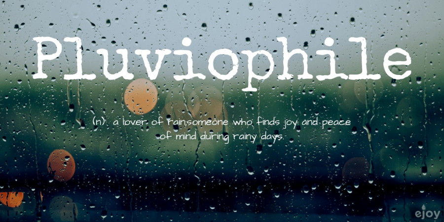 beautiful words in English - pluviophile