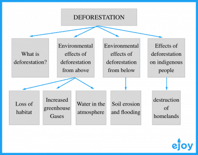 IELTS writing task 2 deforestation